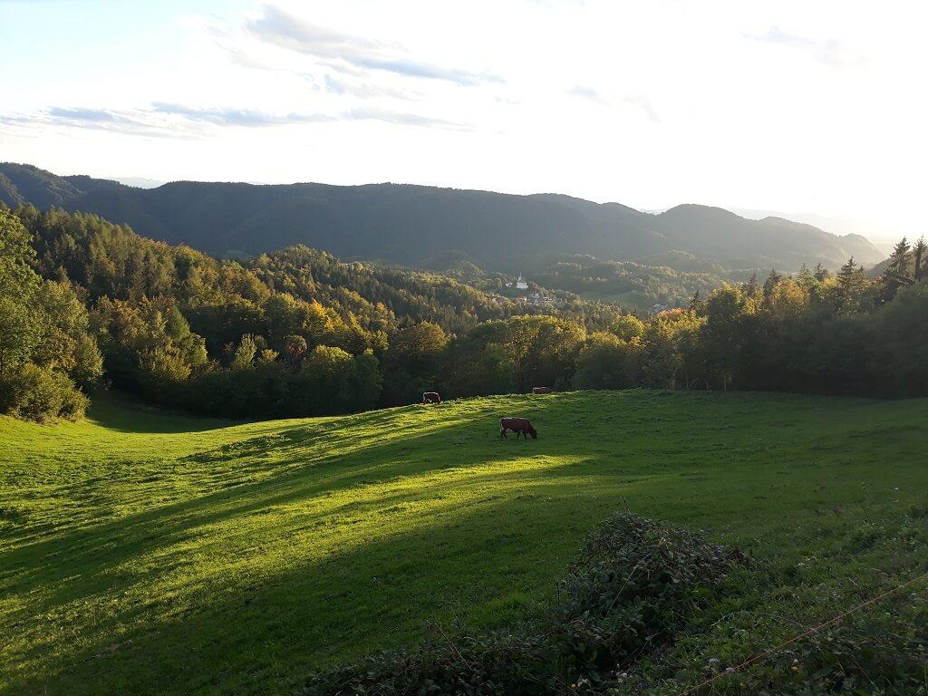 Tuhinjska dolina