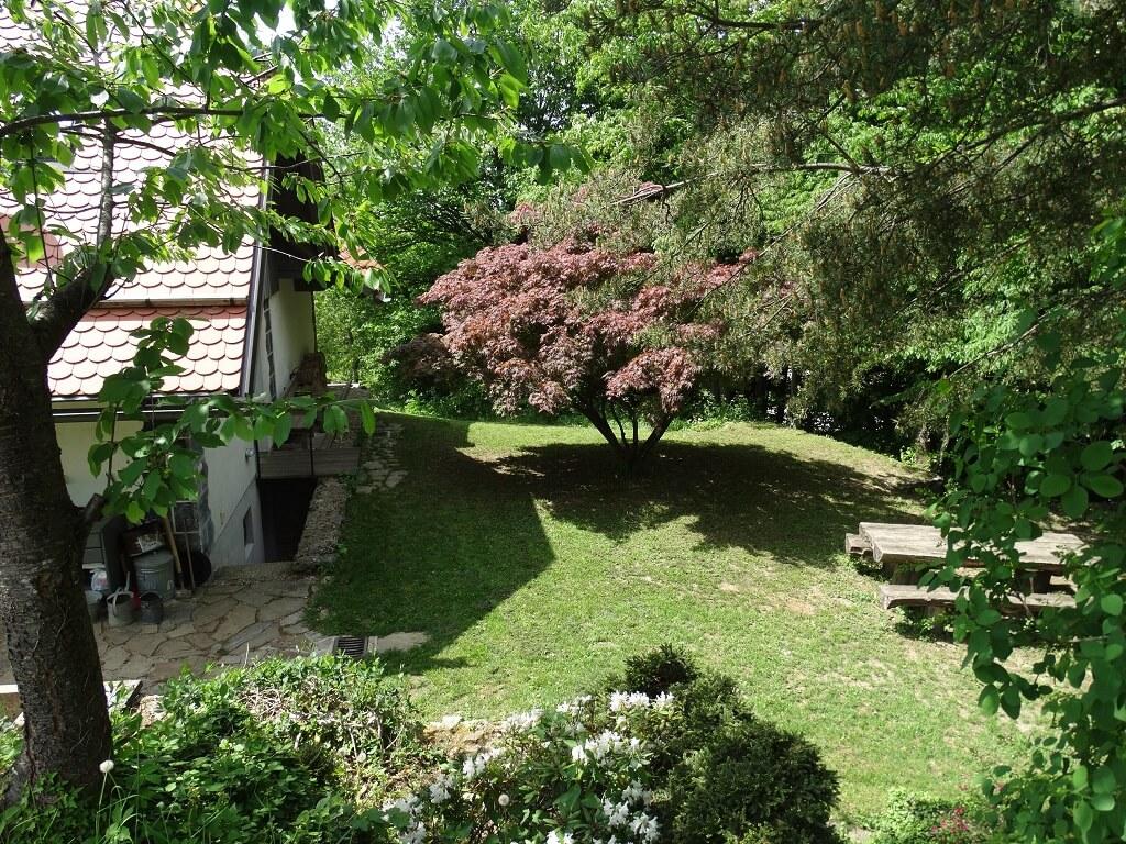Pogled iz vrta